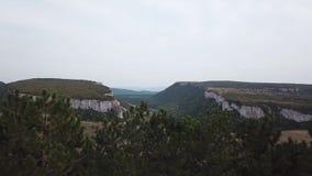 Luchtmening: een spanwijdte in het midden van een canion, aan één kant van de klip, aan de andere kant van het bos in het midden stock video