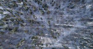 Luchtmening: Hommel die zich over het bos van de sneeuwdekking bewegen stock video