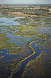 Luchtmening, Okavango-delta, Botswana stock foto's