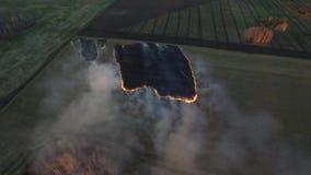 Luchtmening over de brandweermanvrachtwagen die aan het gebied op brand werken luchtmening van het droge gras van Burning van de  stock videobeelden