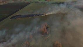 Luchtmening over de brandweermanvrachtwagen die aan het gebied op brand werken luchtmening van het droge gras van Burning van de  stock video