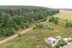 Luchtmening over gebieden en bos op de bovenkant van dak Royalty-vrije Stock Fotografie