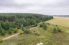Luchtmening over gebieden en bos op de bovenkant van dak Royalty-vrije Stock Afbeeldingen