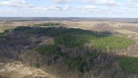 Luchtmening over het bos stock video