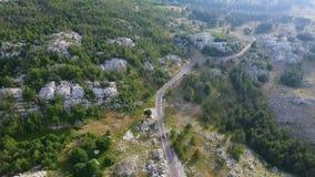 Luchtmening over het bos in de bergen stock video