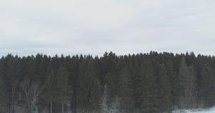Luchtmening over het bos van de de winterspar Royalty-vrije Stock Afbeeldingen