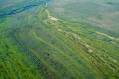 Luchtmening over het Deltamoerasland van Donau, Roemenië Royalty-vrije Stock Afbeeldingen