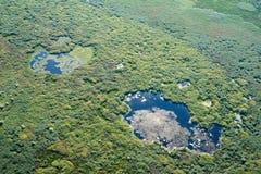 Luchtmening over het Deltamoerasland van Donau, Roemenië Royalty-vrije Stock Afbeelding