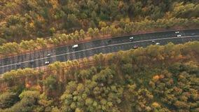 Luchtmening over weg in hout stock video