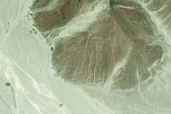 Luchtmening van Astronaut Geoglyph, Nazca-Lijnen, Peru Royalty-vrije Stock Fotografie