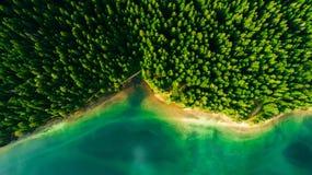 Luchtmening van blauw meer en groene bossen op een zonnige de zomerdag in Zwart Meer, Montenegro royalty-vrije stock foto's