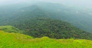 Luchtmening van bos in India stock video