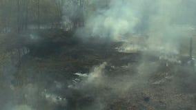 Luchtmening van bosbrand stock videobeelden