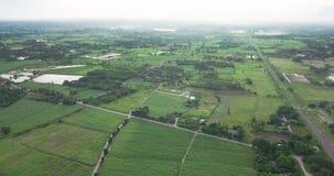 Luchtmening van de huisvesting met de typische rijst landbouw of landbouw in landelijk Thailand stock footage