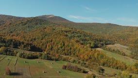 Luchtmening van de Karpatische bergen in de herfst De oogst van het hooi stock videobeelden