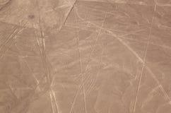 Luchtmening van de Nazca-Lijnen - condor stock afbeelding