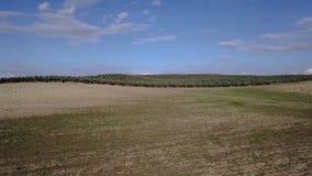 Luchtmening van een de landbouwgebied dichtbij Jaen stock video