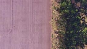 Luchtmening van gebied en bos stock video