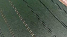 Luchtmening van gecultiveerd gebied stock videobeelden
