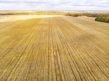 Luchtmening van geel gebied na oogst het Oogsten op de gebieden Hoogste mening van het tarwegebied Autumn Time royalty-vrije stock fotografie