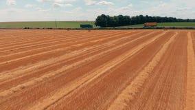 Luchtmening van gewassentarwe of roggegebied met het strobalen en weg van het stookhooi Het landbouwbedrijf van de oogstlandbouw  stock video