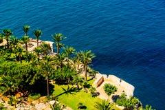 Luchtmening van Groene Palmen en Blauwe Oceaan Royalty-vrije Stock Afbeelding