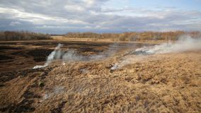 Luchtmening van het droge gras branden op de landbouwgrond stock videobeelden