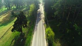Luchtmening van hommel over bergweg en krommen die door boslandschap gaan stock videobeelden