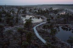 Luchtmening van houten weg, weg in moeras Royalty-vrije Stock Foto's
