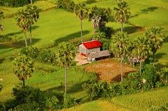 Luchtmening van landbouwbedrijfhuis en gebieden Siem oogst Angkor stock fotografie