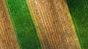 Luchtmening van landbouwgewassen, tarwe, graan en hooi stock foto's