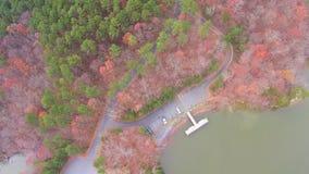 Luchtmening van landschappen en bomen stock video