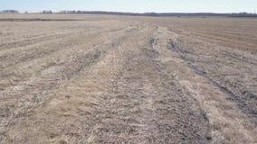 Luchtmening van leeg de herfstgebied Plattelandsgebied stock footage