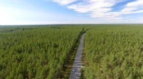 Luchtmening van mooie weg over het bos royalty-vrije stock afbeeldingen