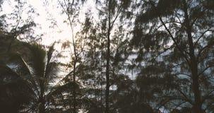 Luchtmening van mooie zonsondergang boven het overzees stock footage