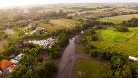 Luchtmening van rijstterras dichtbij aan Echostrand Bali, Indonesië stock video