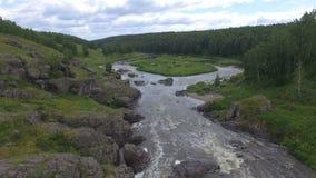 Luchtmening van rivier onder hout stock video
