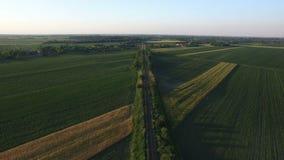 Luchtmening van spoorweg die met tarwegebieden omringd is Sombor, Servië stock video