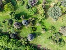 Luchtmening van stadspark Natuurlijke achtergrond Royalty-vrije Stock Fotografie
