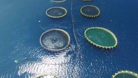 Luchtmening van viskwekerij dichtbij het Eiland Dugi otok stock video