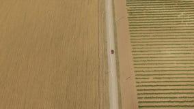 Luchtmening van weg in de voorsteden tussen wijngaard en tarwegebieden stock videobeelden