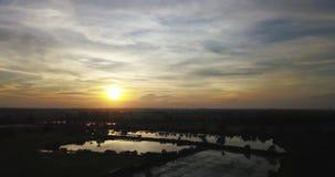 Luchtmening, Vliegend over het padieveld en de weg met mooie hemel en de wolken op zonsondergang stock videobeelden