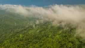Luchtmenings tropisch regenwoud, Mist behandelde bergen in keerkring royalty-vrije stock fotografie