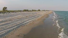 Luchtmenings zandig strand van het overzees bij de avond met meeuw stock footage