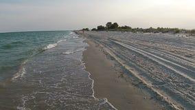 Luchtmenings zandig strand van het overzees bij de avond met meeuw stock video
