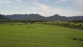 Luchtmotierivier dichtbij groen gebied tegen bosbouwheuvels stock videobeelden