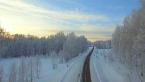 Luchtonderzoek van de winterbos stock footage