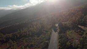 Luchtschot De autoaandrijving langs een bergweg bij zonsondergang Omringd door een bos van groene pijnbomen Spanje, Kanarie stock footage
