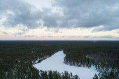 Luchtstijgenvlucht over het bos van de de winterpijnboom in donkere avond na zonsondergang Royalty-vrije Stock Foto's