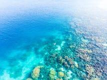 Luchttop down die mensen op koraalrif tropische Cara?bische overzees snorkelen, turkoois blauw water De archipel van Indonesi? Wa royalty-vrije stock foto's